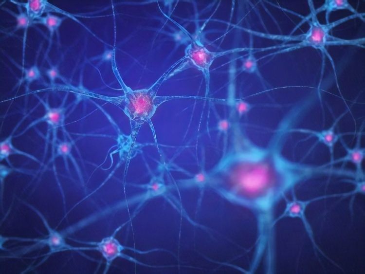 DeepMind abstract learning