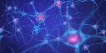 DeepMind expands AI cancer research program to Japan