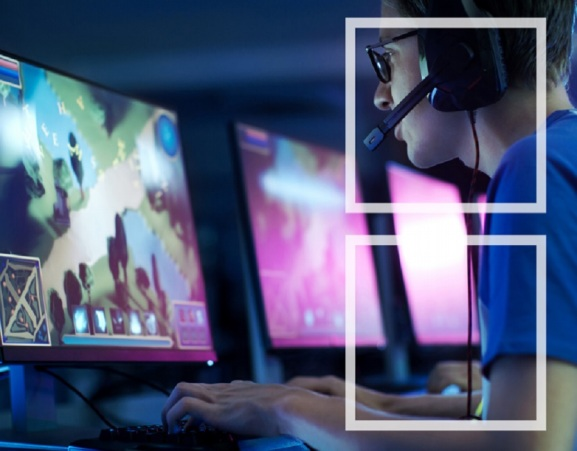 Esports investment and revenues will continue to grow, a survey says.