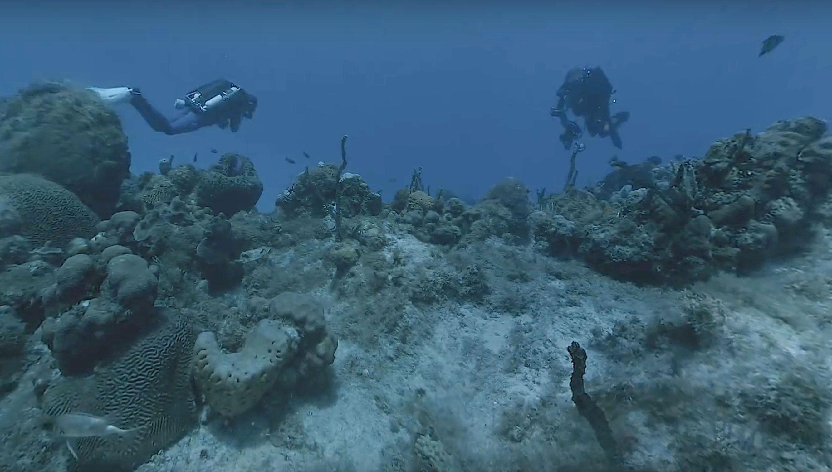 Hydrus VR records cinema-quality 8K virtual reality videos underwater