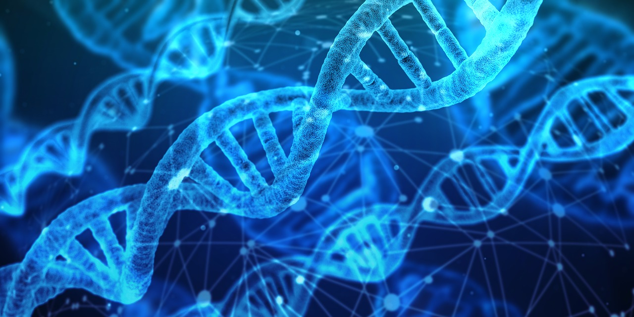 Shivom is creating a genomic data hub to elongate human life with AI