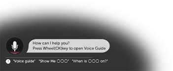 LG Voice Mate