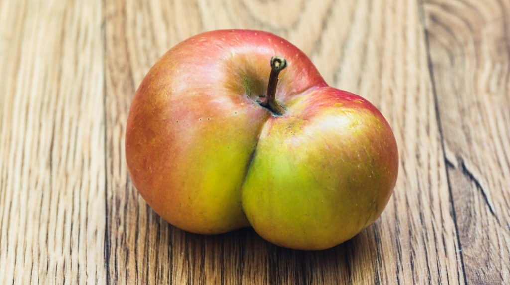 Is that 2 for the price of 1... or just a deformed apple?