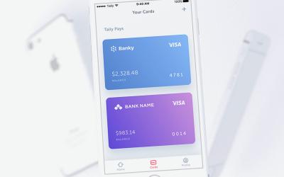 image credit tally - Visa Credit Card App