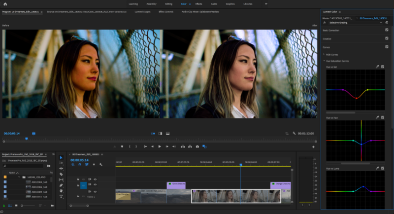 Premiere Pro 13, Dimension 2 0, and everything else Adobe announced