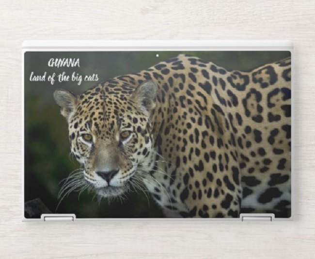 HP has a partnership with Zazzle to let you create your own laptop skin.