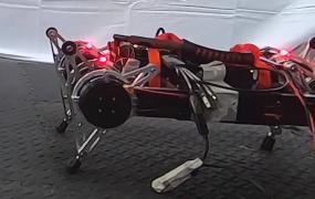 AI walking system