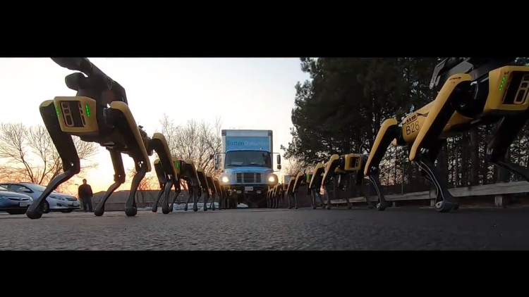 A pack of 10 Spot Mini robots from Boston Dynamics haul