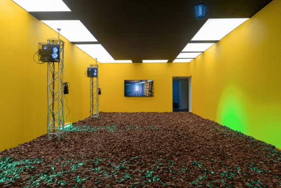 Physical XR art installation.