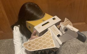 One of Nintendo's Labo VR Toy-Cons is a bird controller.