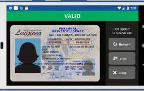 A sample image of a digital driver's license accessed through the LA Wallet app.