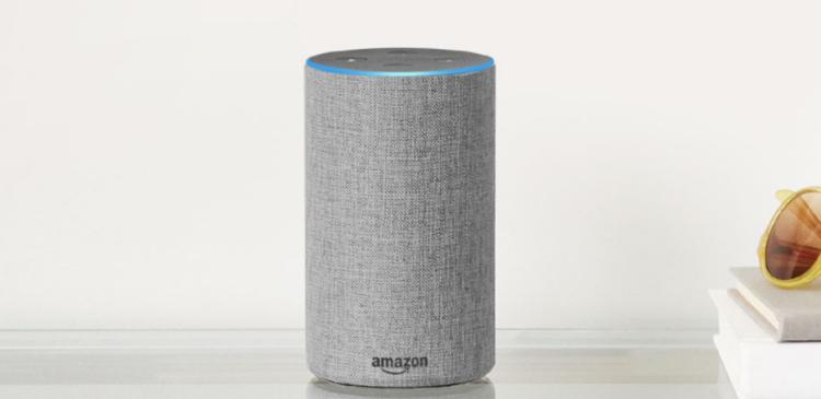 The Amazon Echo digital assistant.