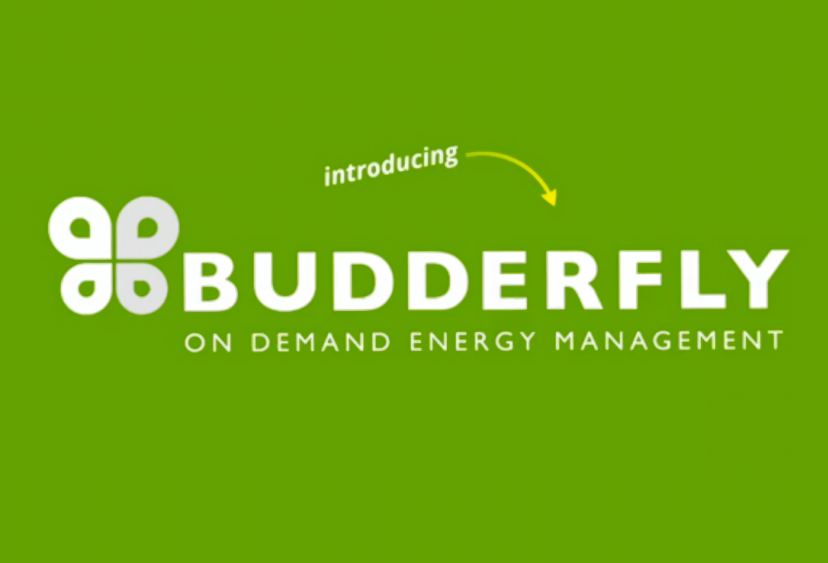 Budderfly raises $55 million to cut companies' energy bills
