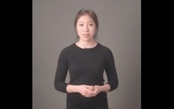 Udacity AI lecture videos