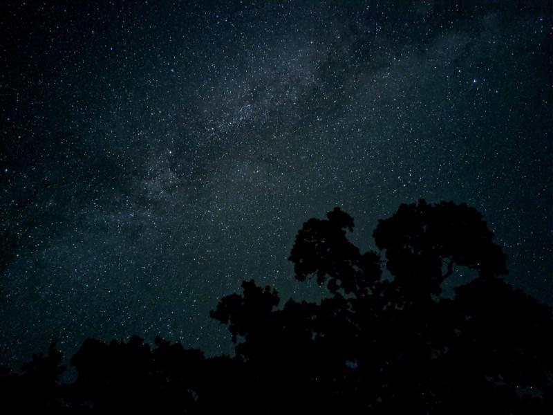Google Pixel 4 series astrophotography