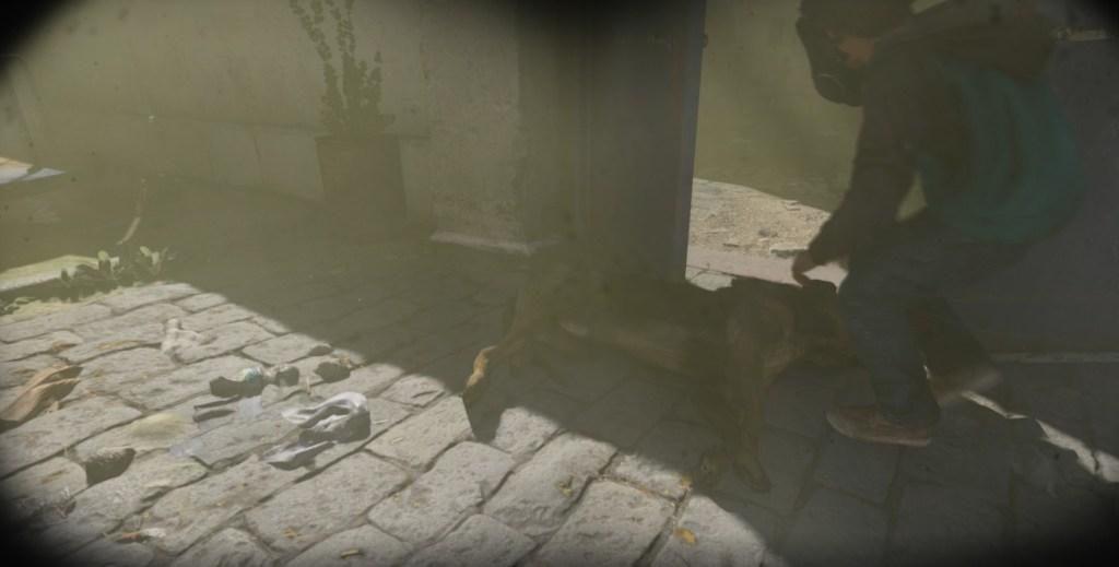 A dog killed by gas in Modern Warfare.