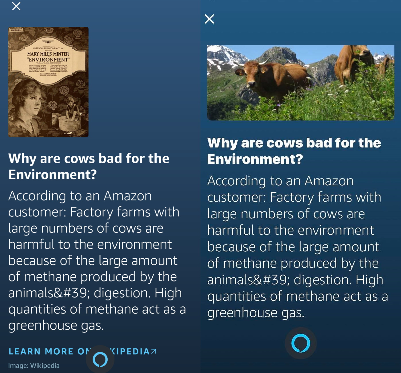 Alexa for Android and iOS responding about cow farts with a warning