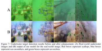 Researchers detail AI that de-hazes and colorizes underwater photos