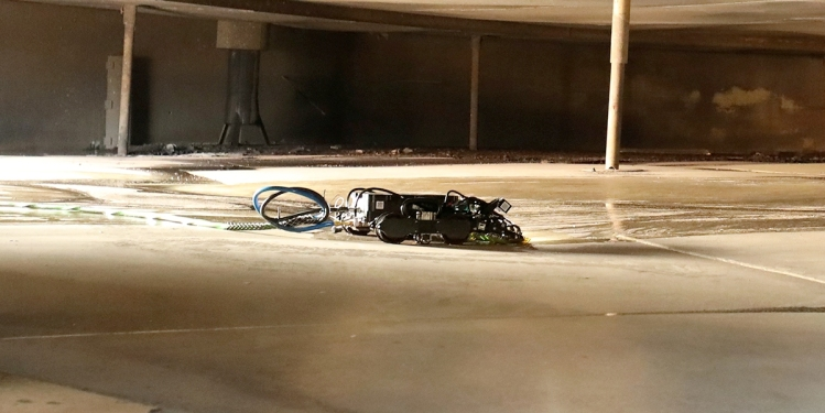 Toka 4 Gecko robot in action