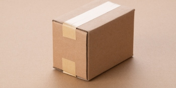 A single small brown package