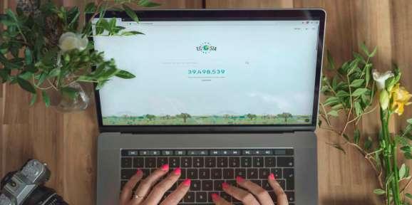 Ecosia on Chrome