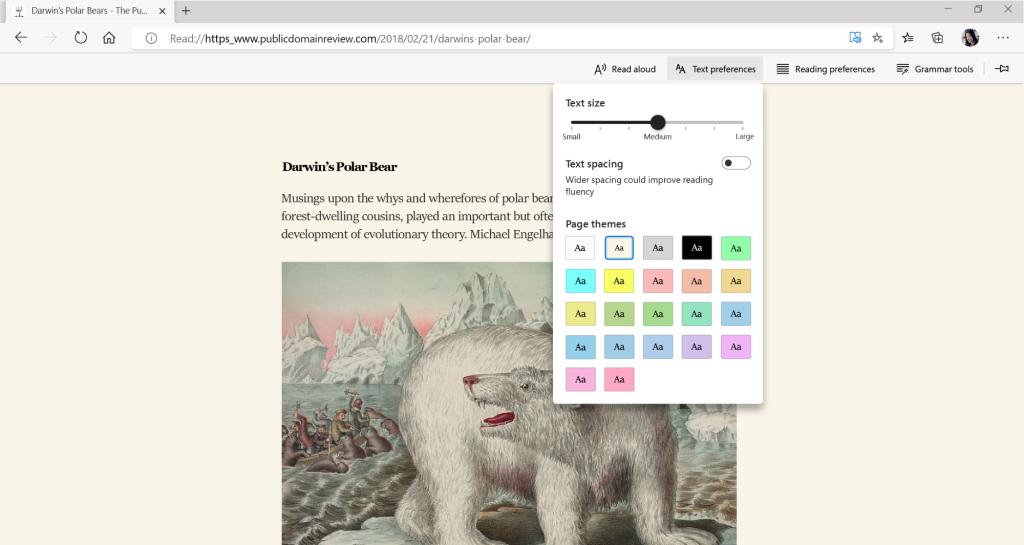 Microsoft Edge Immersive Reader feature
