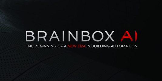 BrainBox AI