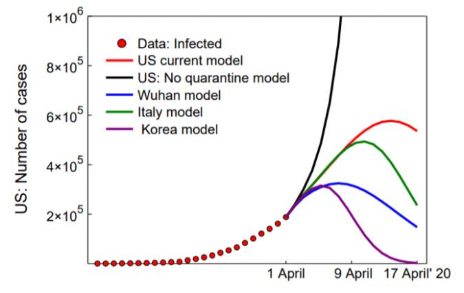 MIT disease model