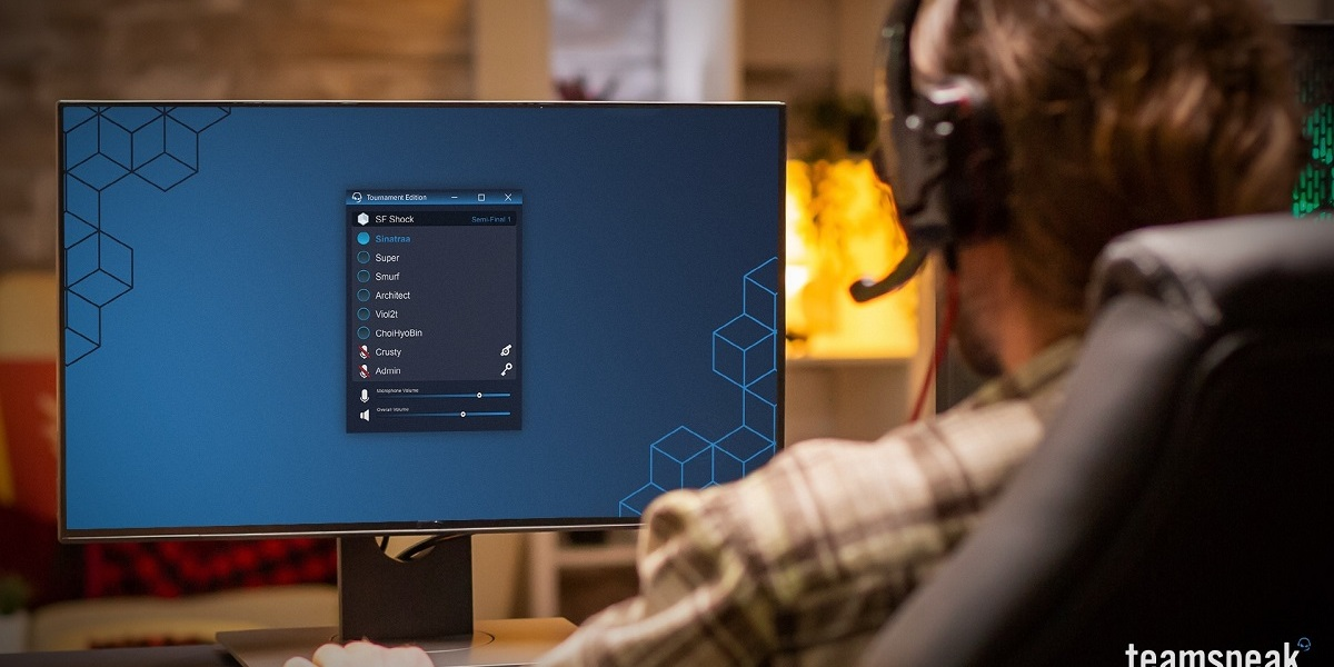 TeamSpeak offers voice chat for gamers.
