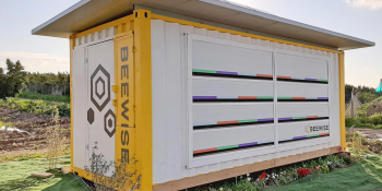 Beewise raises $10 million to automate beehive monitoring and harvesting