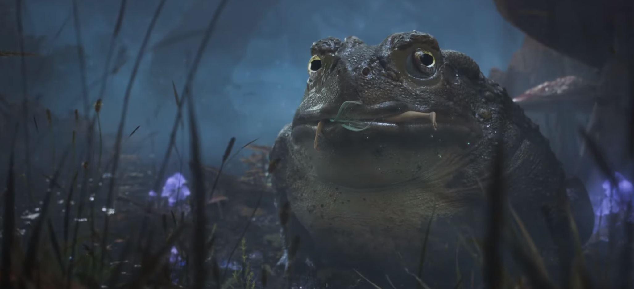 Fable reboot encerra Xbox Showcase com teaser cinematográfico ...