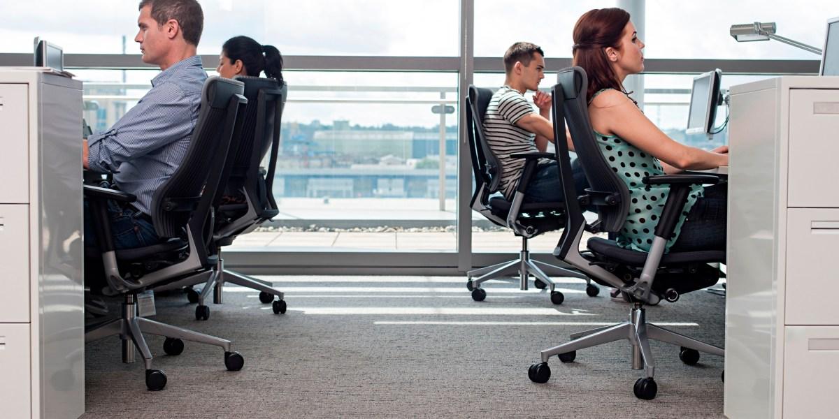 people in office focused on work