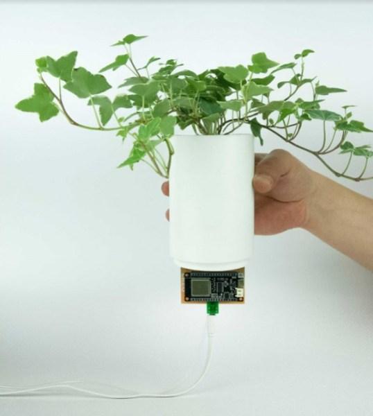 Creo unveils AI-based BioBulb for indoor plant walls biobulb 5