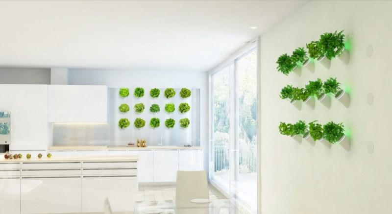 Creo unveils AI-based BioBulb for indoor plant walls biobulb 6