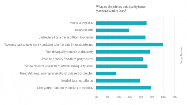 primary data quality issues