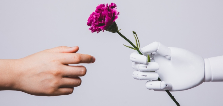human hand reaching for carnation flower in robotic hand