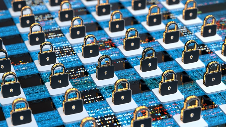 Digital background security systems and data protection