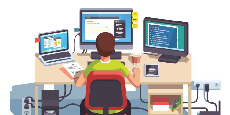 Professional programmer / software developer / open source