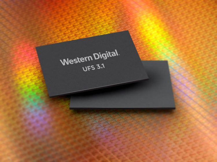 Western Digital owns the SanDisk Professional and WD Black storage brands.