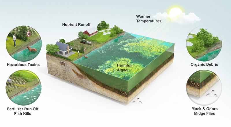 The problem for agriculture and aquaculture.