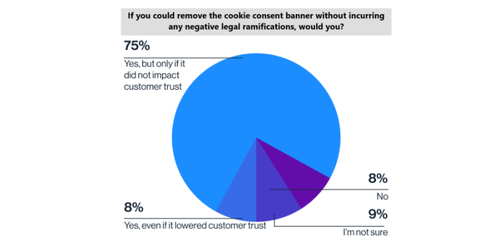 GDPR cookies survey