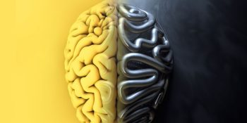 Artificial intelligence vs. neurophysiology: Why the difference matters