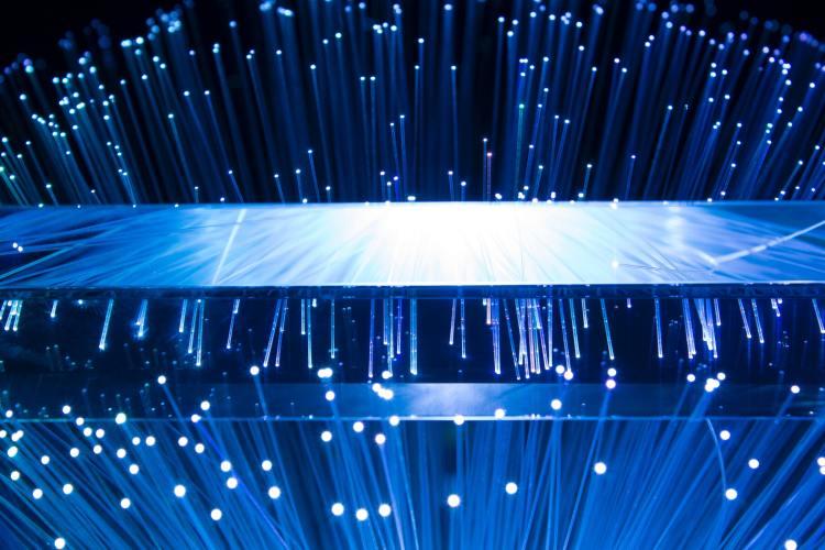 Fiber optic tree viewed through a prism